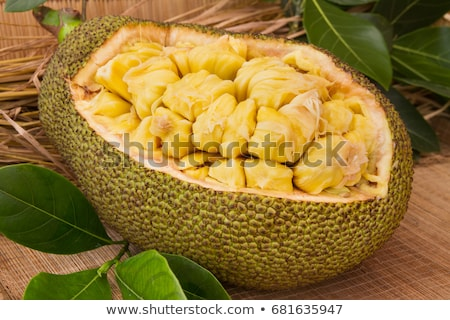 fresh-ripe-jackfruit-sweet-segment-450w-681635947